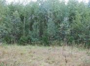 Коттеджный поселок Лешково